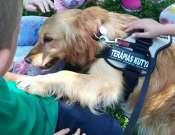Kutyás játszóház a Csigabiga Alapítvány terápiás kutyáival