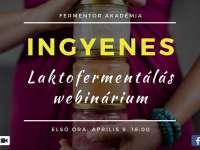 FerMentor Műhely - laktofermentálás webinárium