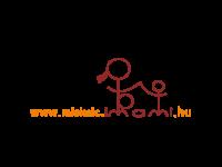 Miskolci és Borsod-Abaúj-Zemplén megyei baba-mama programok